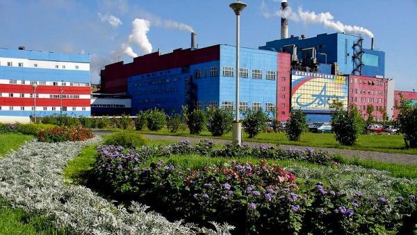 Фото: programlesprom.ru