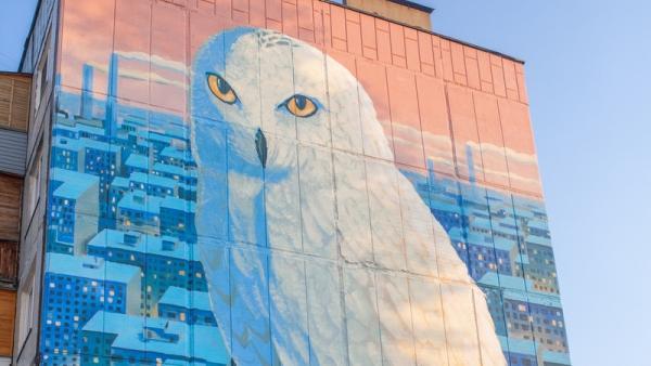 Фото: vk.com/taibola