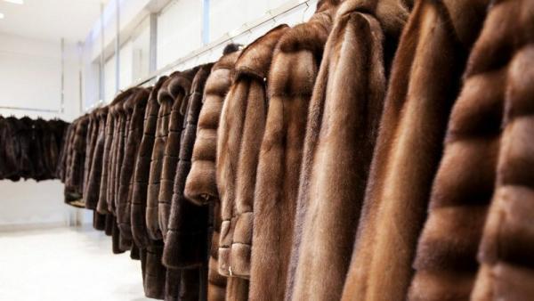 Фото: rot-front.com