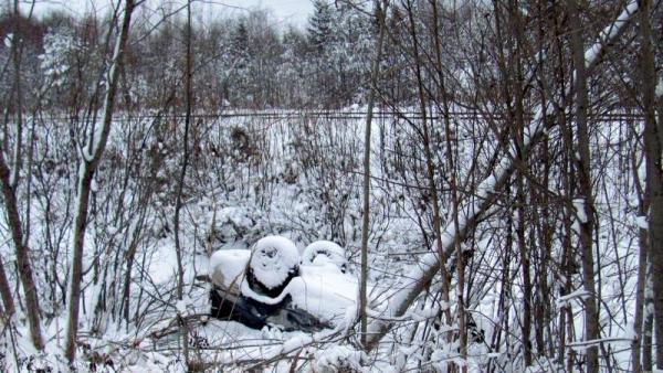 Фото: пресс-служба УГИБДД УМВД России по Архангельской области