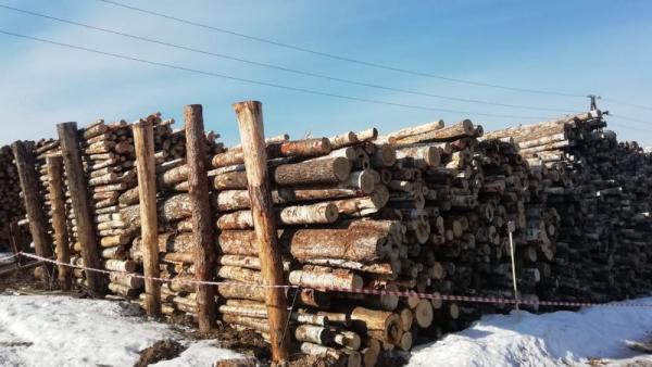 Фото пресс-службы СКР России по Архангельской области