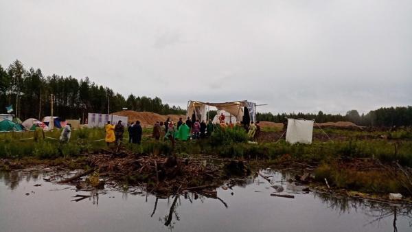 Правительство Поморья рассказало о будущем одного из участков земли на Шиесе