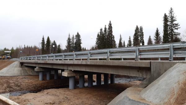 Мост через реку Шилега