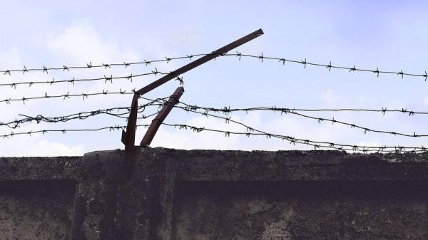Бывшее руководство колонии в Коряжме за взятки «крышевало» осужденного