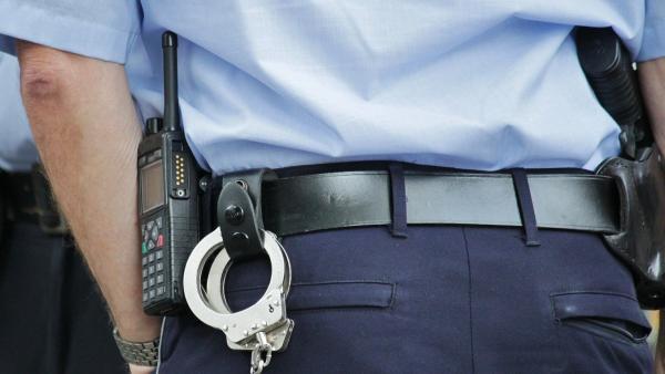 В Вельском районе пьяный друг алководителя укусил за палец полицейского