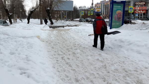 Неделя в Архангельской области начнется с оттепели