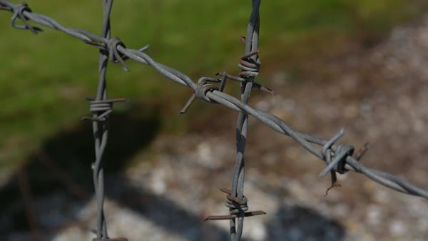 Забил до смерти: житель Онеги получил 19 лет колонии за убийство матери